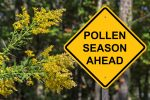 4 Ways To Reduce Spring Allergens In Your Home